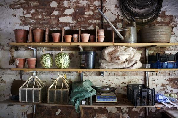 Three shelves with everyday gardening tools and similar objects, in front of a wall of rubble masonry, whose plaster has been partially peeled off.