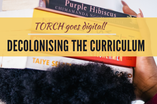 decolonising the curriculum carousel