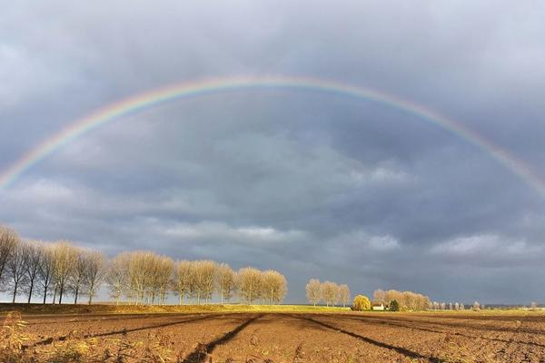 rainbow over a plowed field