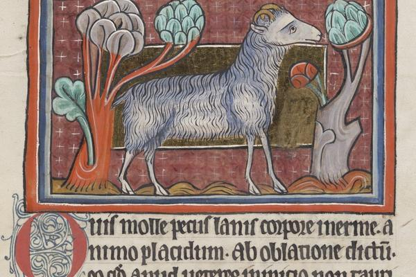 medieval script with ram eating trees