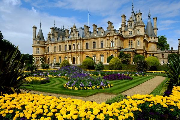 Waddesdon manor from the garden. A flowerbed with yellow flowers in the front.