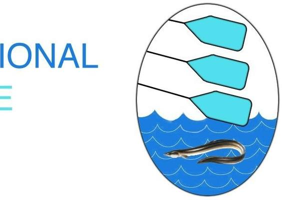 Logo showing three rowing oars over water with an eel under the oars in the water