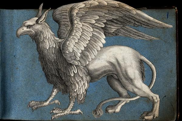 Illustration of a grey griffin (mythical creature with front of an eagle, back of a lion) against a blue background.
