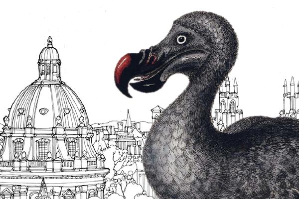 Oxford dodo twitter