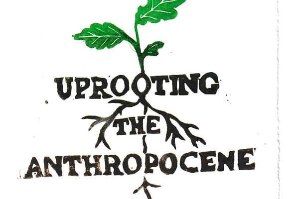 uprooting the anthroponcene