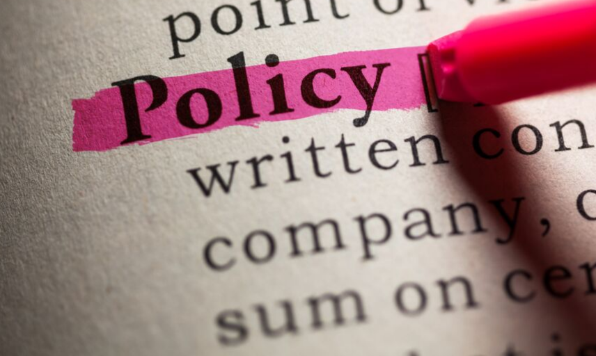'Policy' highlighted in pink in a dictionary