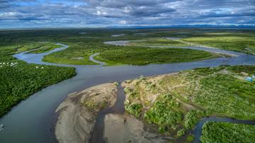 Aerial landscape photo of the Y-K Delta, showing a lush green tundra landscape dappled with lakes and rivers. There is a mountain range in the background.