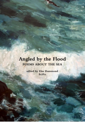 angled by the flood