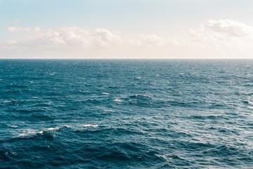 scipo sea