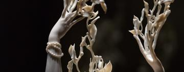 image of bone carved with jewels on antler like stands
