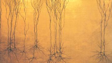 greg dunn  hippocampal pyramidal neurons