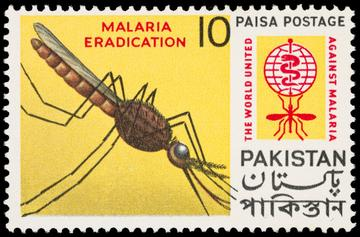 yello postage stamp showing mosquito