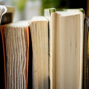Literature and transnational citizenship