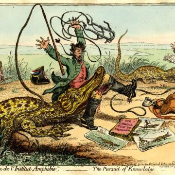 gillray  the pursuit of knowledge