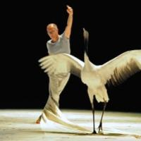 Man on stage dancing with Crane (the bird)