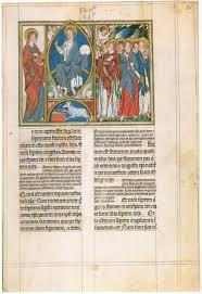 Digitized Rare Books and Manuscripts Survey