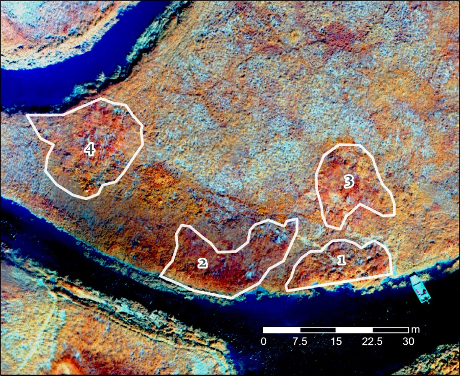 Top down aerial view of an archaeological site with four abandoned sod-built structures around 15m in diameter on average.